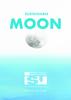 2019_Sustainable Moon_Executive summary (8.71 MB) - application/pdf