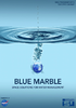 Blue Marble executive summary (6.75MB) - application/pdf